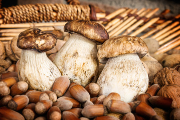 Mushroom boletus in a basket with nuts