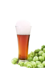 Beer in a glass and green hop.