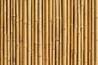 bamboo fence background - 56881864