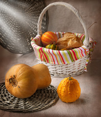 Harvest of pumpkins on a background a canvas