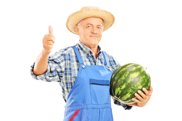 Smiling farmer holding a watermelon and giving thumb up