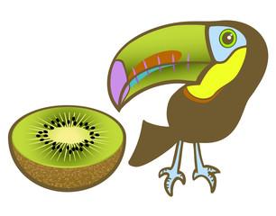 Toucan and kiwi