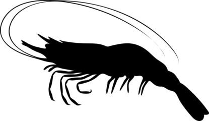 pictogramme crevette