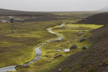 Islanda muschio lungo il corso dei fiumi caldi