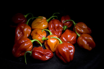 peperoncini  rossi è gialli piccanti