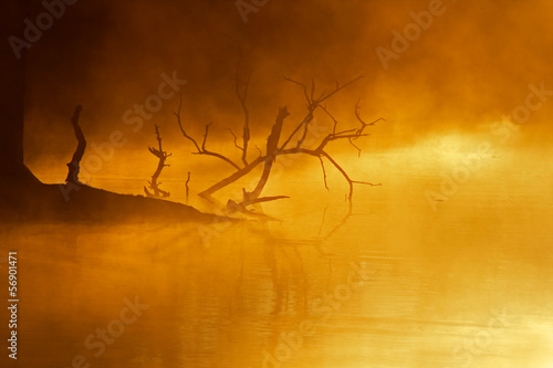 Mist over water, early morning