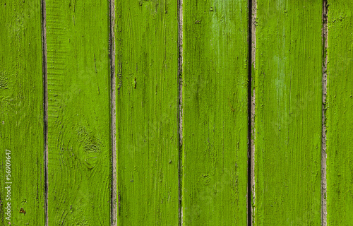 Old wooden wall background green