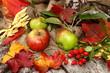Herbstdekoration mit Äpfel, Hagebutten, Herbstlaub
