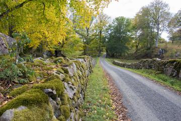 Höö nature reserves in Sweden
