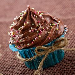 Chocolate cupcake in a blue wrapper