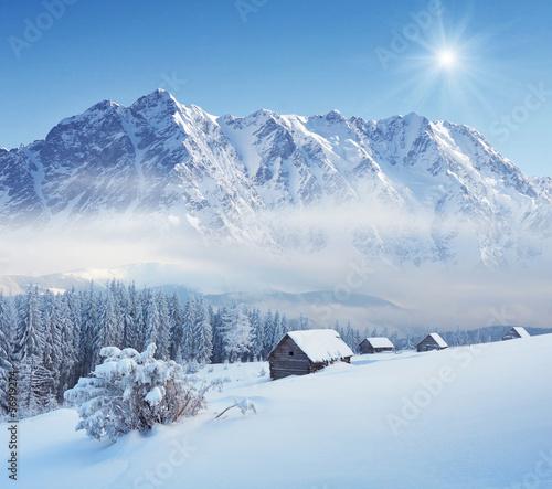 Fototapeten,winter,schnee,schneedecke,verschneit