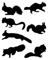 Black silhouettes of squirrels-vector