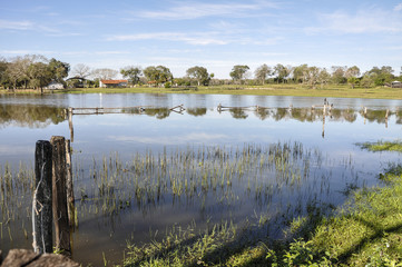 Brazil, Pantanal, flooded farm