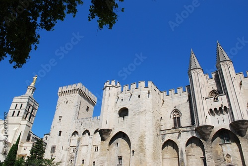 Popes Palace and Notre Dame church in Avignon, Provence, France