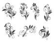 Seven floral elements