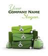 Elegant green baggage
