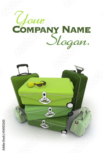 Elegant green luggage kit