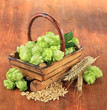 Fresh green hops in basket and barley, on wooden background
