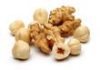 Walnut and Hazelnuts