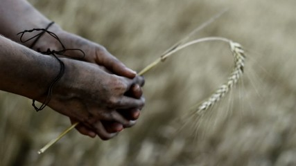 Hands holding barley. Hunger, starvation concept.