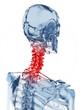 3d rendered illustration of a glass skeleton