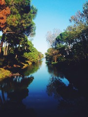canale