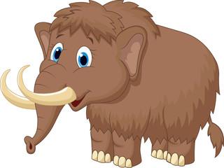Cute mammooth cartoon