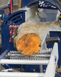 Wood is cutting on sawmill machinery