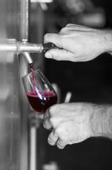 dégustation d'un verre de vin