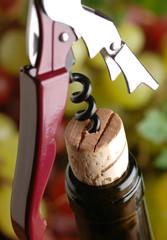 cavatappi con bottiglia di vino