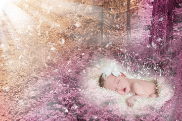 Beautiful winged infant sleeping in a magical forest