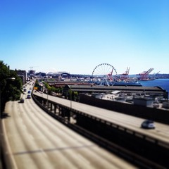 Seattle Summers on the Water Front