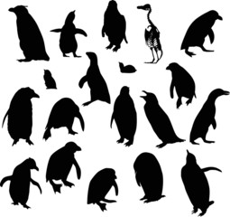 penguin silhouettes collection isolated on white