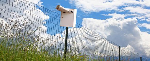 Briefkasten mit Zeitung am Zaun