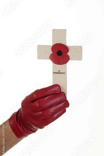 Glove and Remembrance Day cross with poppy