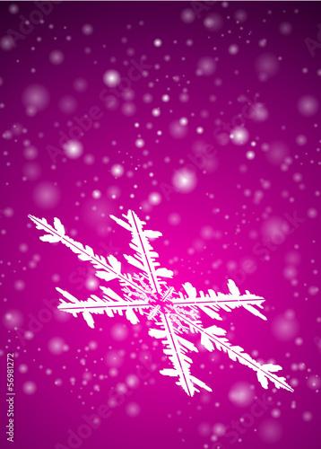 Hintergrund, Eisblume, Vorlage, Schneeflocke, Flocke, Violett