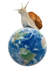 Globe and Snail (clipping path included)