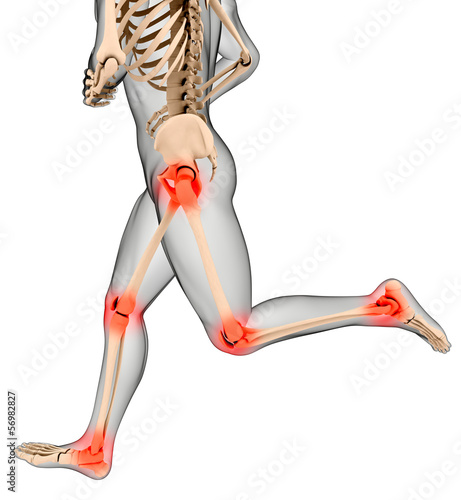 Male medical skeleton running legs