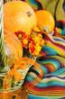 Motley pumpkins for Halloween