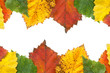Autumn leaves frame with copy space