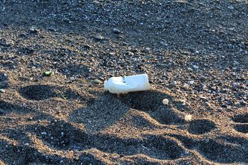 Sea Plastic Pollution