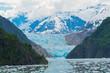 Leinwanddruck Bild - Sawyer Glacier