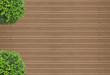 buxus sur fond de plancher de terrasse en bois