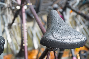 Water on saddle