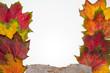 canvas print picture - Herbstlaubrahmen