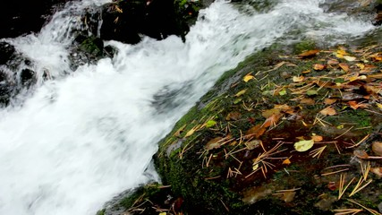 Pure fresh water waterfall in autumn forest