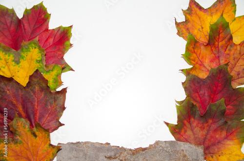 canvas print picture Herbstlaubrahmen