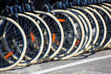 Bicycles front wheel tyres in a row
