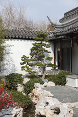 A View of Oriental Garden at Sunny Day