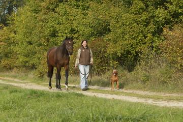 Spaziergang Frau mit Hund und Pferd